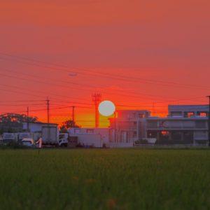夕陽と飛行機の画像